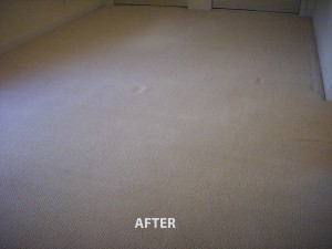 Hollywood_FL_CARPET_CLEANING_003