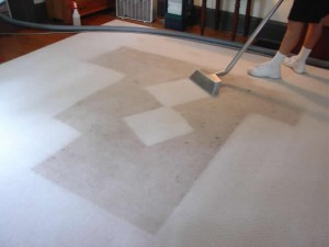 Hollywood_FL_CARPET_CLEANING_004