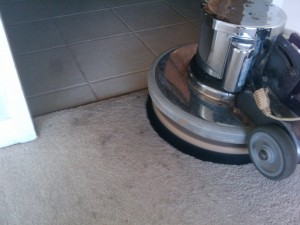 Hollywood_FL_CARPET_CLEANING_005