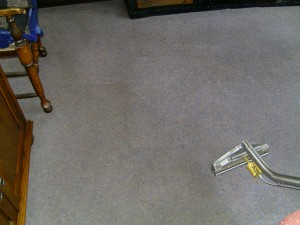 Hollywood_FL_CARPET_CLEANING_012