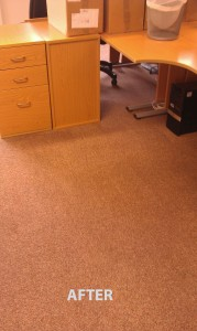 Hollywood_FL_CARPET_CLEANING_015