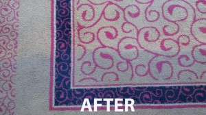 Hollywood_FL_RUG_CLEANING_010